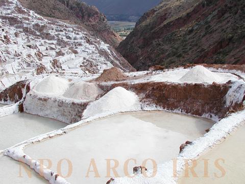 インカ天日塩 マラスの塩